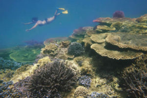 Snorkelling at Blue Holes